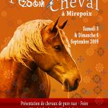 picture of Festi'Cheval